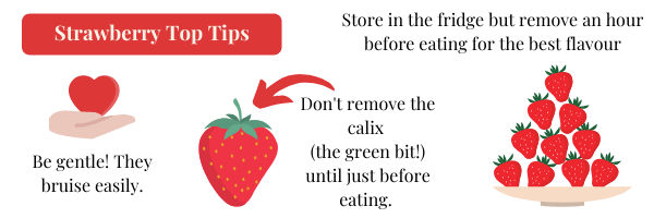 Strawberry Picking Top Tips