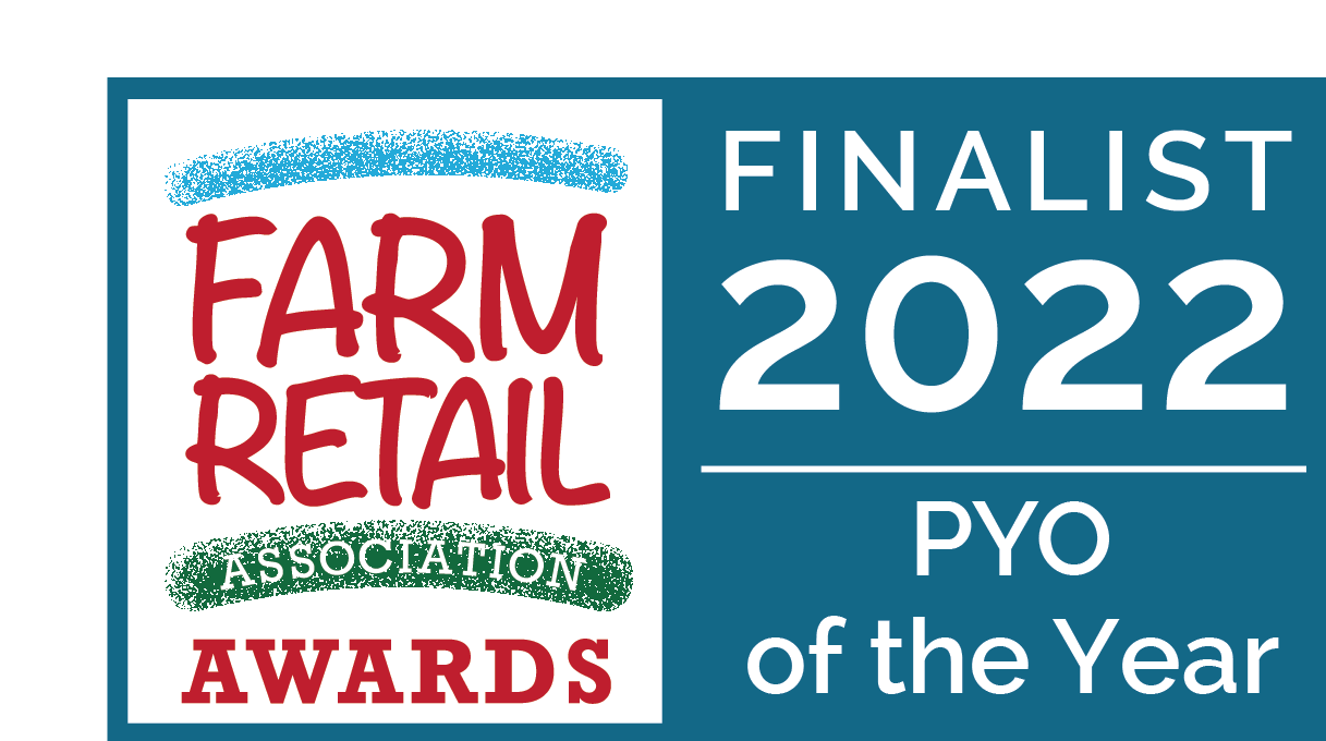 We are PYO of the Year Finalists!